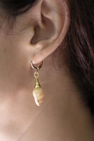GOLDEN NAVY - Seashell Earrings - Thumbnail