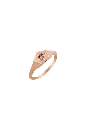 PETITE LUXE - LEON - 14K Solid Gold Chevalier Ring
